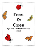 Tens and Ones- Insects