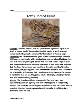 Texas Horned Lizard - informational article questions voca