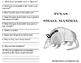 Texas Small Mammal: Nine-Banded Armadillo