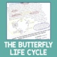 Text Feature Identification: Butterfly Life Cycle
