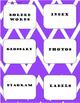 Nonfiction Text Features Lapbook