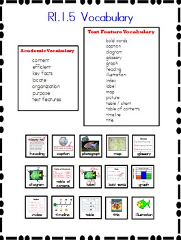 Text Feature Visuals Modified for Special Education/ELL/ES