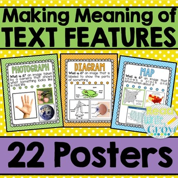 *FLASH FREEBIE* Text Features Posters ONLY