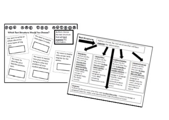 Text Structure - Interactive Notebook Student Page and Pra
