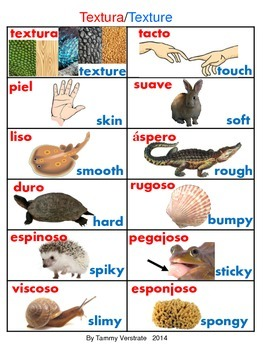 Texture bilingual poster