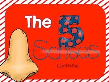 The 5 Senses