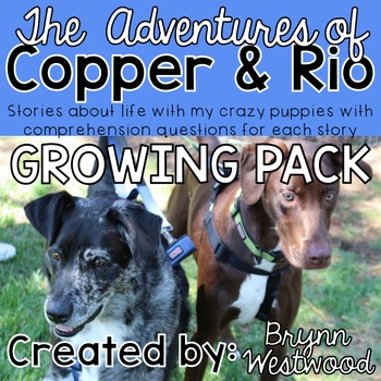 The Adventures of Copper & Rio-Stories w/ Comprehension Questions