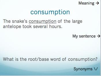 The All American Slurp vocabulary - Holt McDougal Literatu