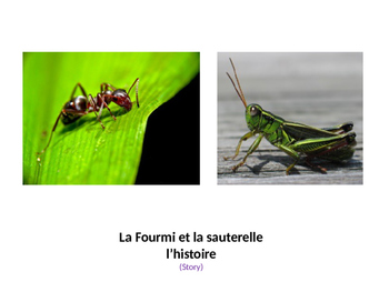 The Ant and the Grasshopper Story and Activities for French 1
