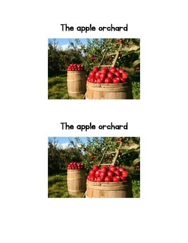 The Apple Orchard emergent reader