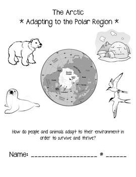 The Arctic - Adapting to the Polar Region