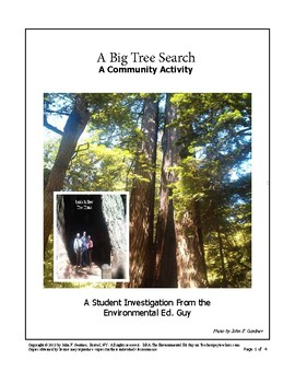The Big Tree Search