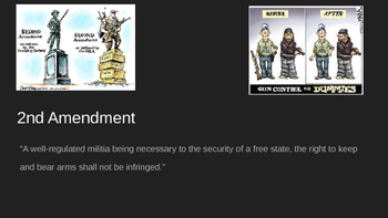 The Bill of Rights: The Second Amendment, The Right to Bear Arms