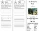 The Birchbark House Trifold - Journeys 5th Grade Unit 5 We