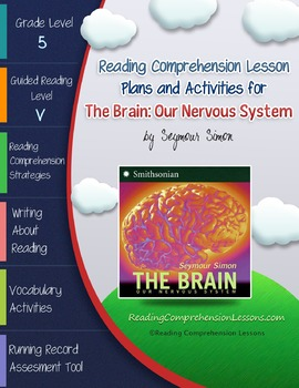 The Brain: Our Nervous System Lesson Plans & Activities Pa