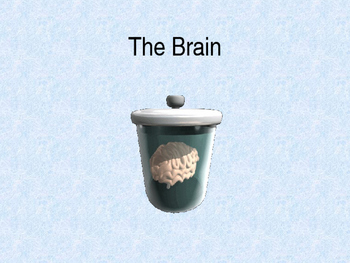 The Brain PPT