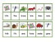 The Bug Collector - A Game for Reading Vowel-Consonant-E S