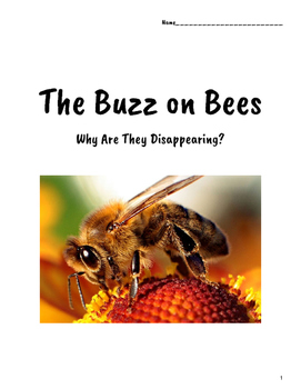 The Buzz on Bees Student Unit