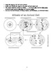 The Cell Cycle & Mitosis