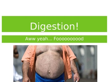 The Digestive System Lesson - Powerpoint and Flipped Class