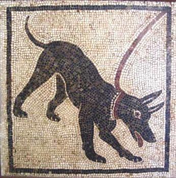The Dog of Pompeii Vocabulary