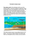 The Earth's Carbon Cycle