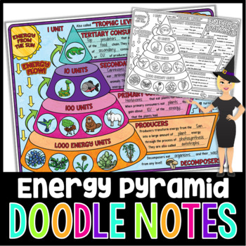 The Energy Pyramid Doodle Notes