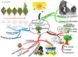 The Evolution of Ecosystem Mind Map