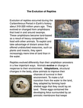 The Evolution of Reptiles Common Core Activity