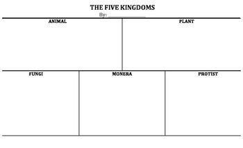 The Five Kingdoms