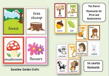 The Forest Flashcards for Pre-k and Kindergarten (16 image