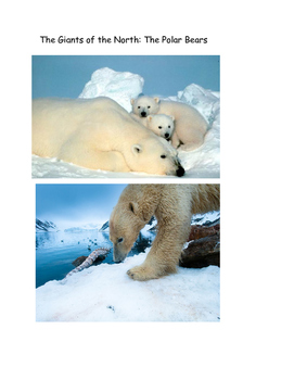 The Giants of the North: The Mighty Polar Bear