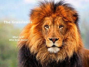 The Grassland Power Point