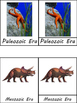 The History of the Earth:  Geological/Evolutionary Timelin