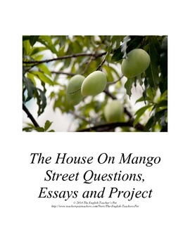 The House on Mango Street Discussion Guide, Essay Question