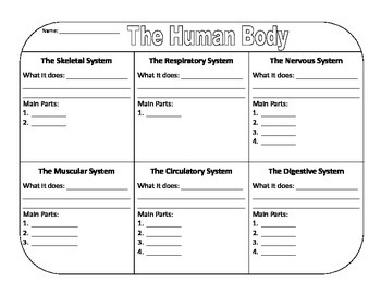 The Human Body Graphic Organizer