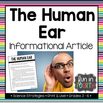 The Human Ear Informational Article