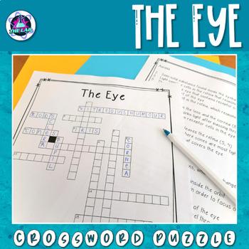 The Human Eye Crossword Puzzle