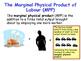The Labour Market - Marginal Revenue Product & Marginal Ph