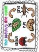 The Ladybug Life Cycle