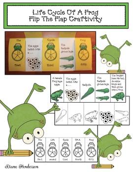 The Life Cycle Of A Frog Flip The Flap Craftivity