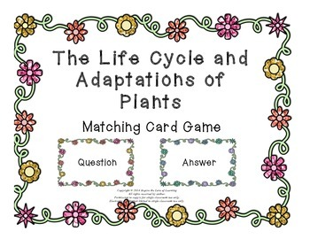 The Life Cycle and Adaptations of Plants