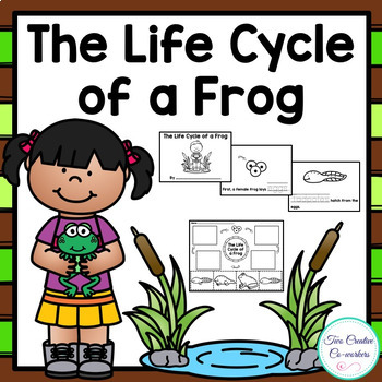 The Life Cycle of a Frog {printable mini book, worksheets,