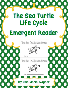 The Sea Turtle Life Cycle