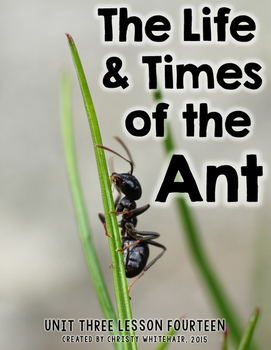 The Life and Times of the Ant {Textbook Companion}
