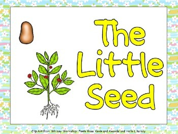 The Little Seed- Plant Life Cycle Shared Reading for Kinde