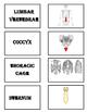 The Memory Game Skeleton System