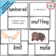 The Mitten Literature Link {Storytelling, Sequencing, Vocabulary}