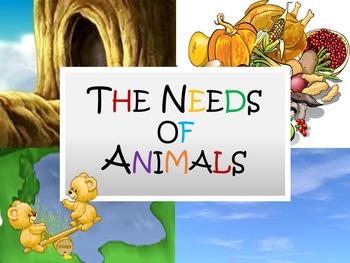 The Needs of Animals Lesson Presentation