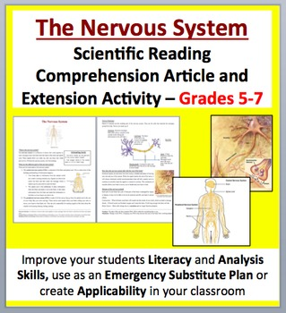 The Nervous System - Science Reading Article - Grades 5-7